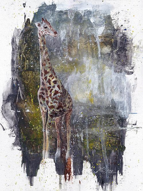 Giraffe - Original Painting