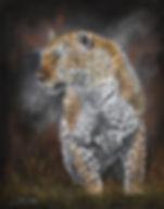 Leopard (web)2.jpg