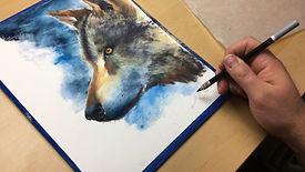 Wolf (website).JPG