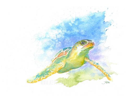 See, Turtle