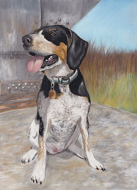 pet-portrait-dog-drawing-custom-art-web