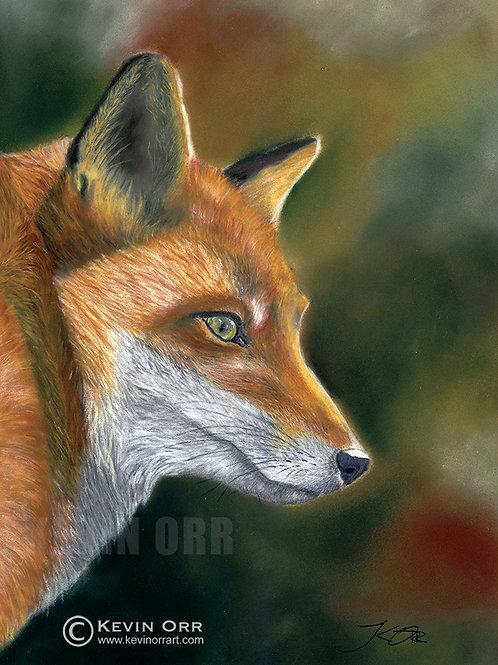 Fox - Original Painting