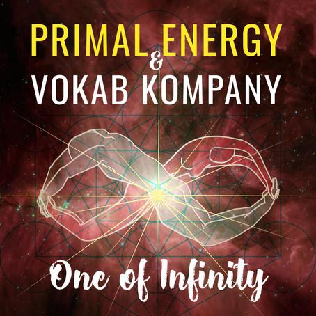 One of Infinity EP by Primal Energy & Vokab Kompany!