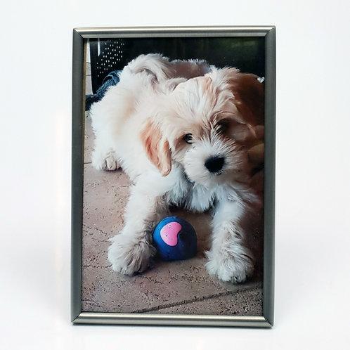 AL - Mat Zilver - Fotolijst - Bol