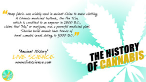 Ancient History of Cannabis