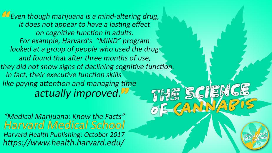 Even Though Marijuana.jpg