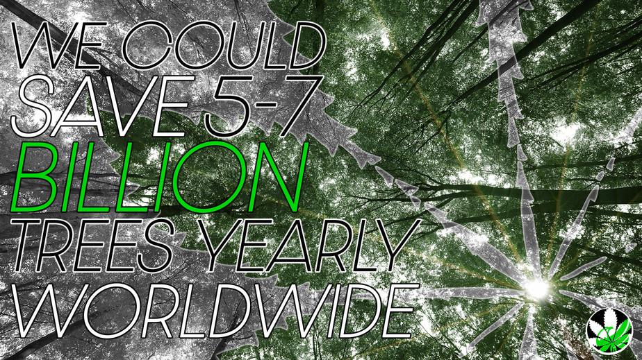 Billions of Trees.jpg