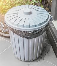 Trash Can Cleaner.jpg
