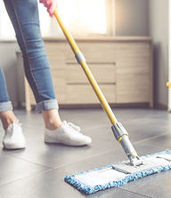 Floor Cleaner.jpg