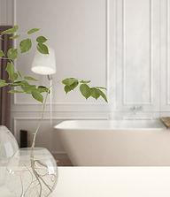 Bathroom_Cleaner.jpg