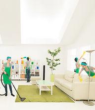 Multi Cleaner.jpg