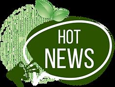 hot newss3.png