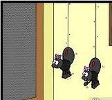 fly screens cartoon_edited.jpg
