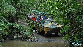 army-duck-rainforest-station.jpg