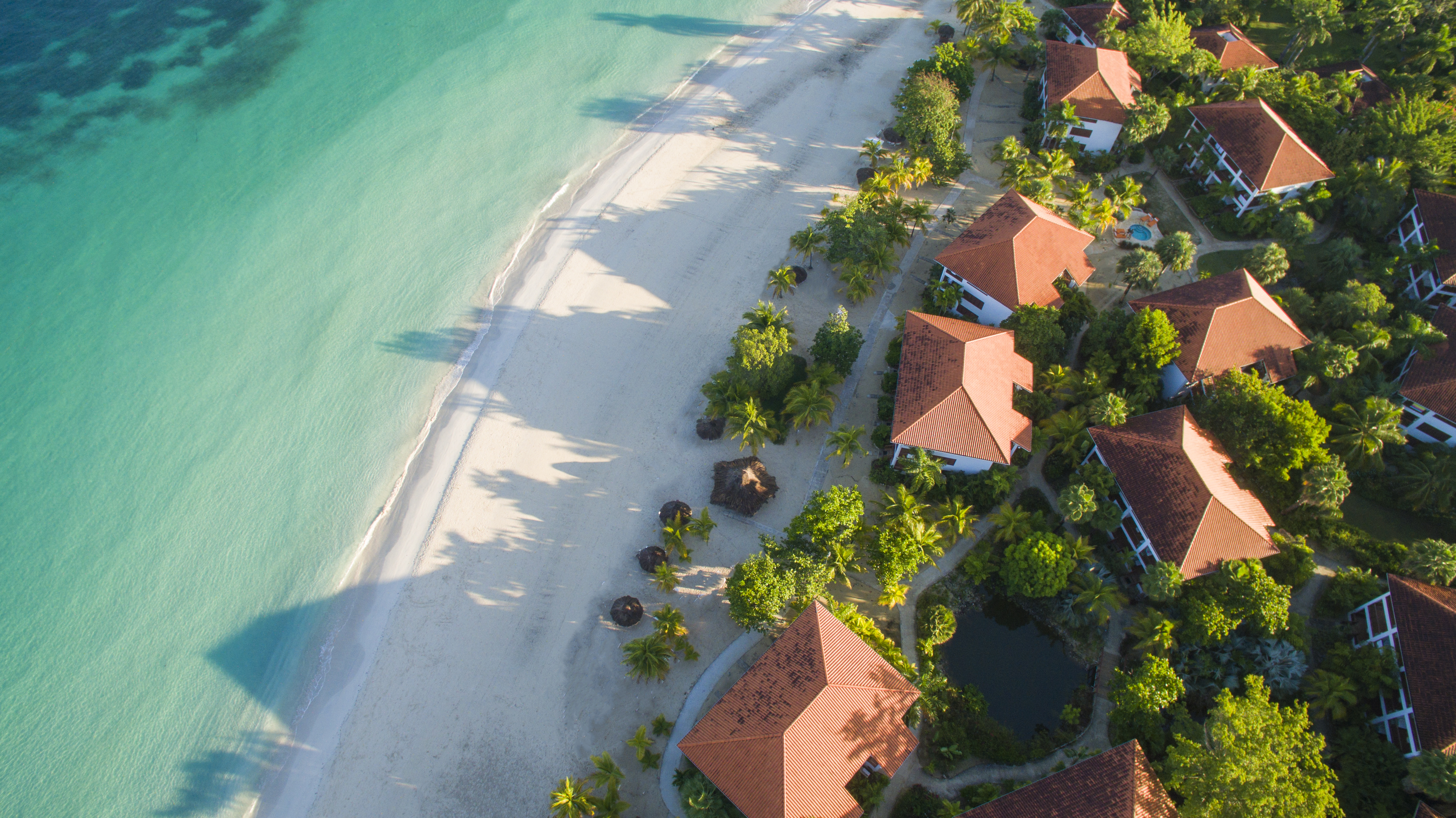 Travel Agency All-Inclusive Resort Couples Swept Away 35