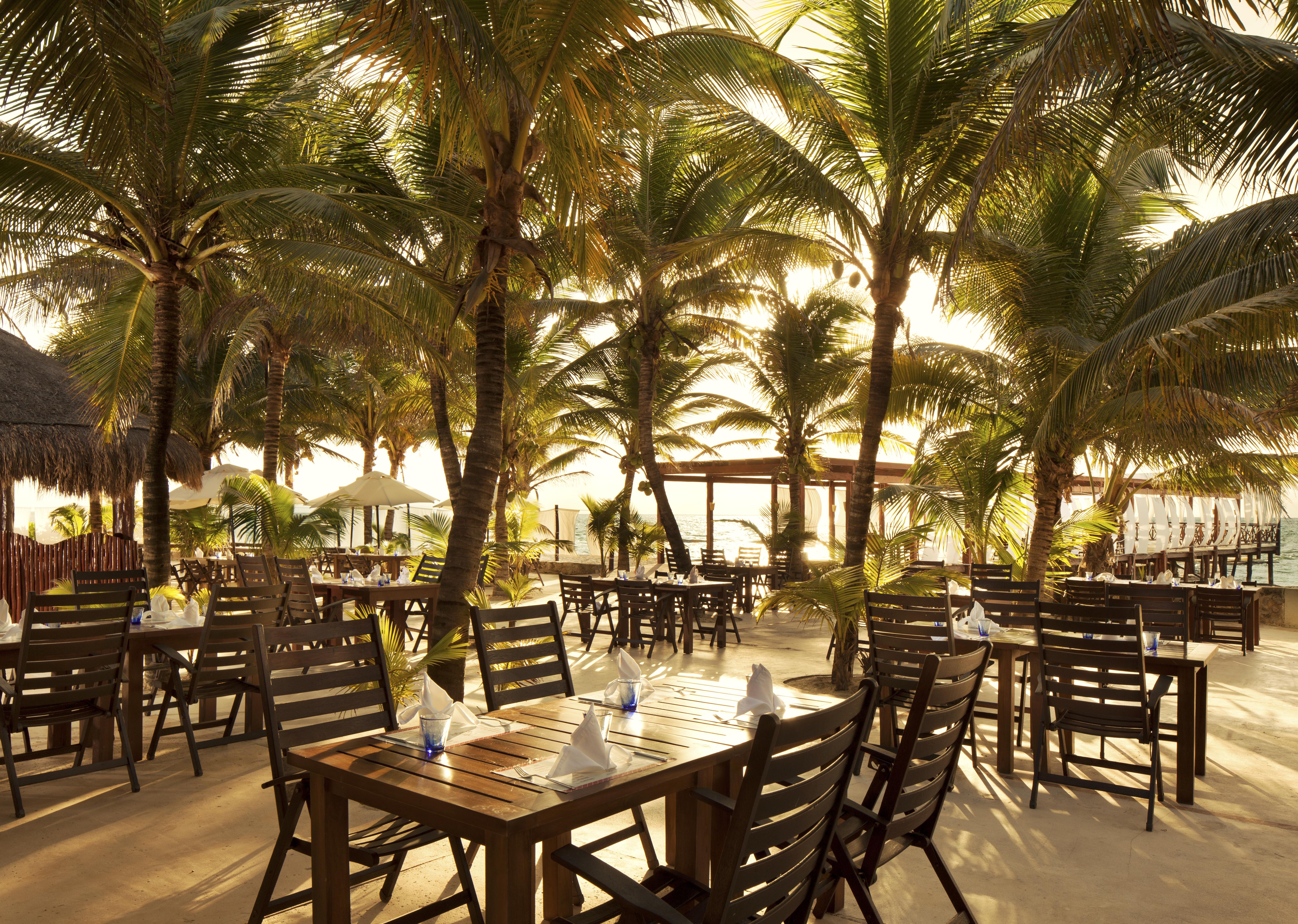 Travel Agency All-Inclusive Resort El Dorado Royale 30