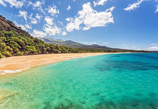 Travel Agency All-Inclusive Resort Maui