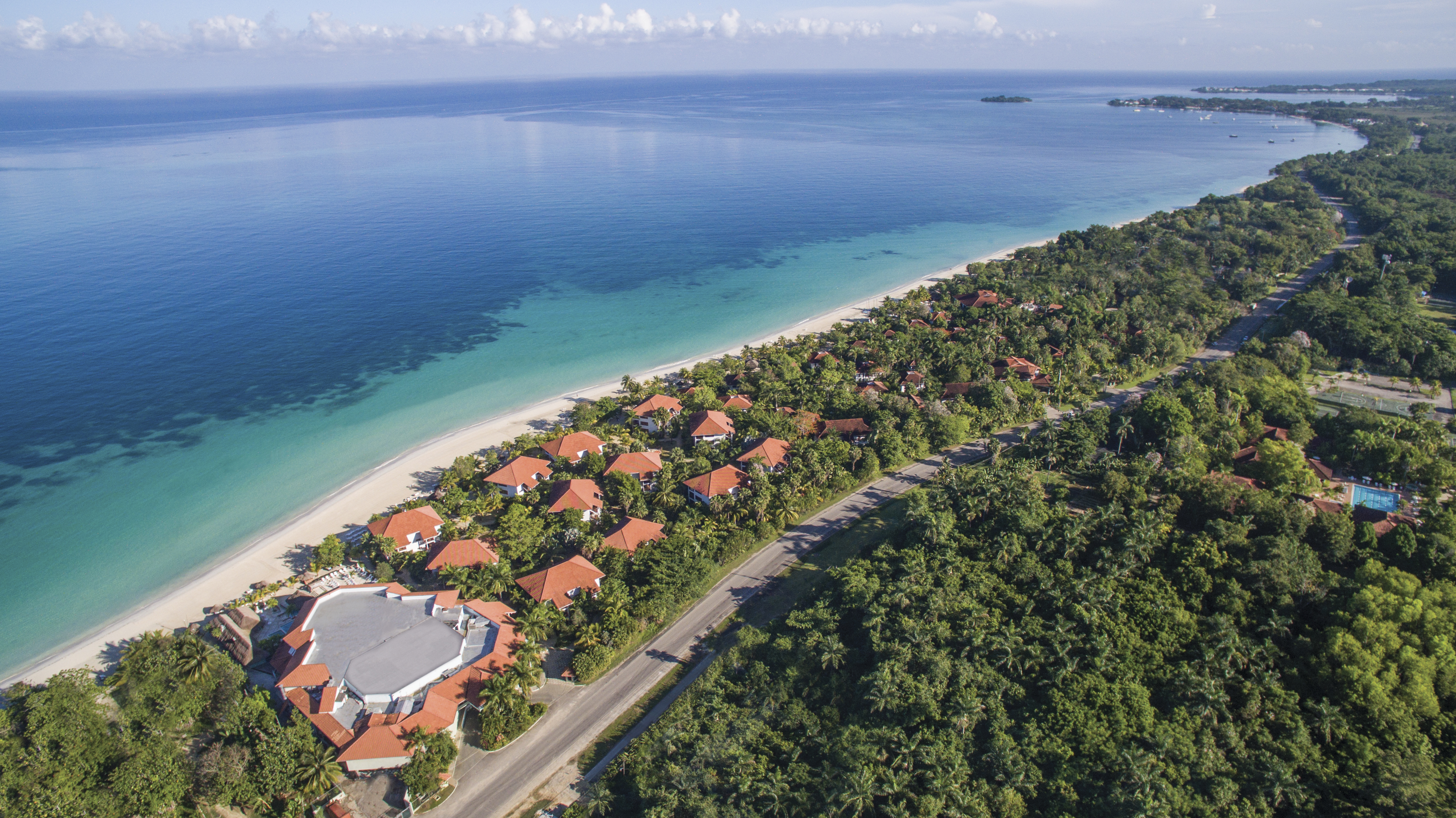 Travel Agency All-Inclusive Resort Couples Swept Away 01