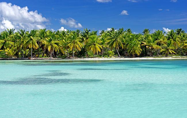 Travel Agency All-Inclusive Resort Punta