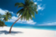 All-inclusive vacations and honeymoons in the Dominican Republic