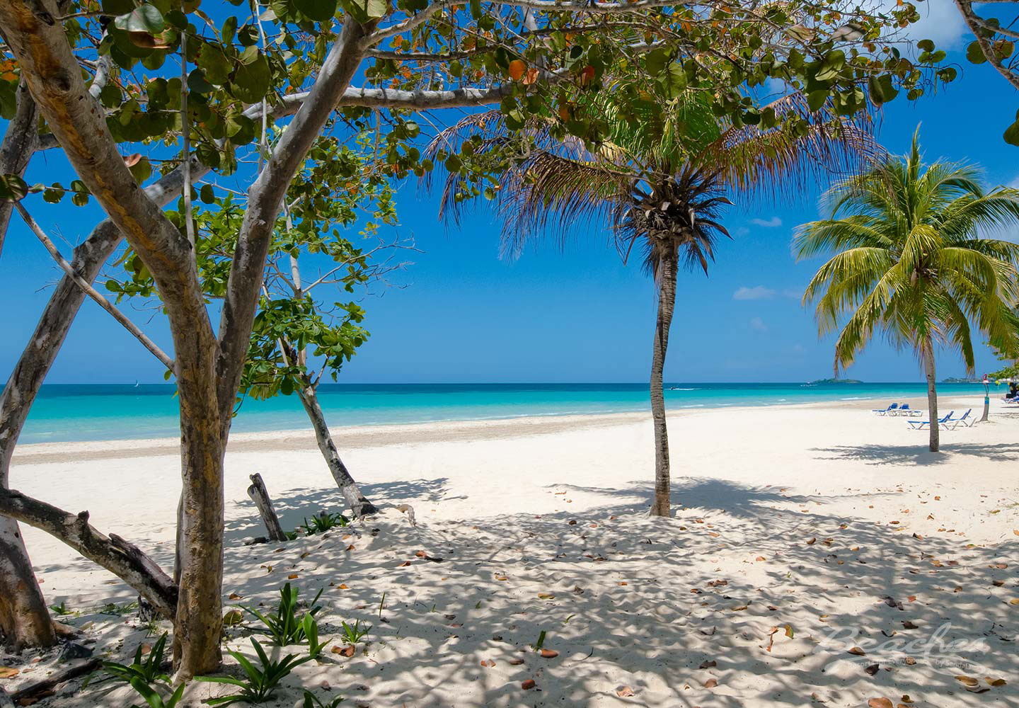 Travel Agency All-Inclusive Resort Beaches Negril 014