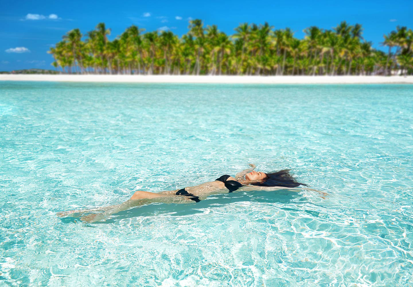 Travel Agency All-Inclusive Resort Sandals Emerald Bay 100