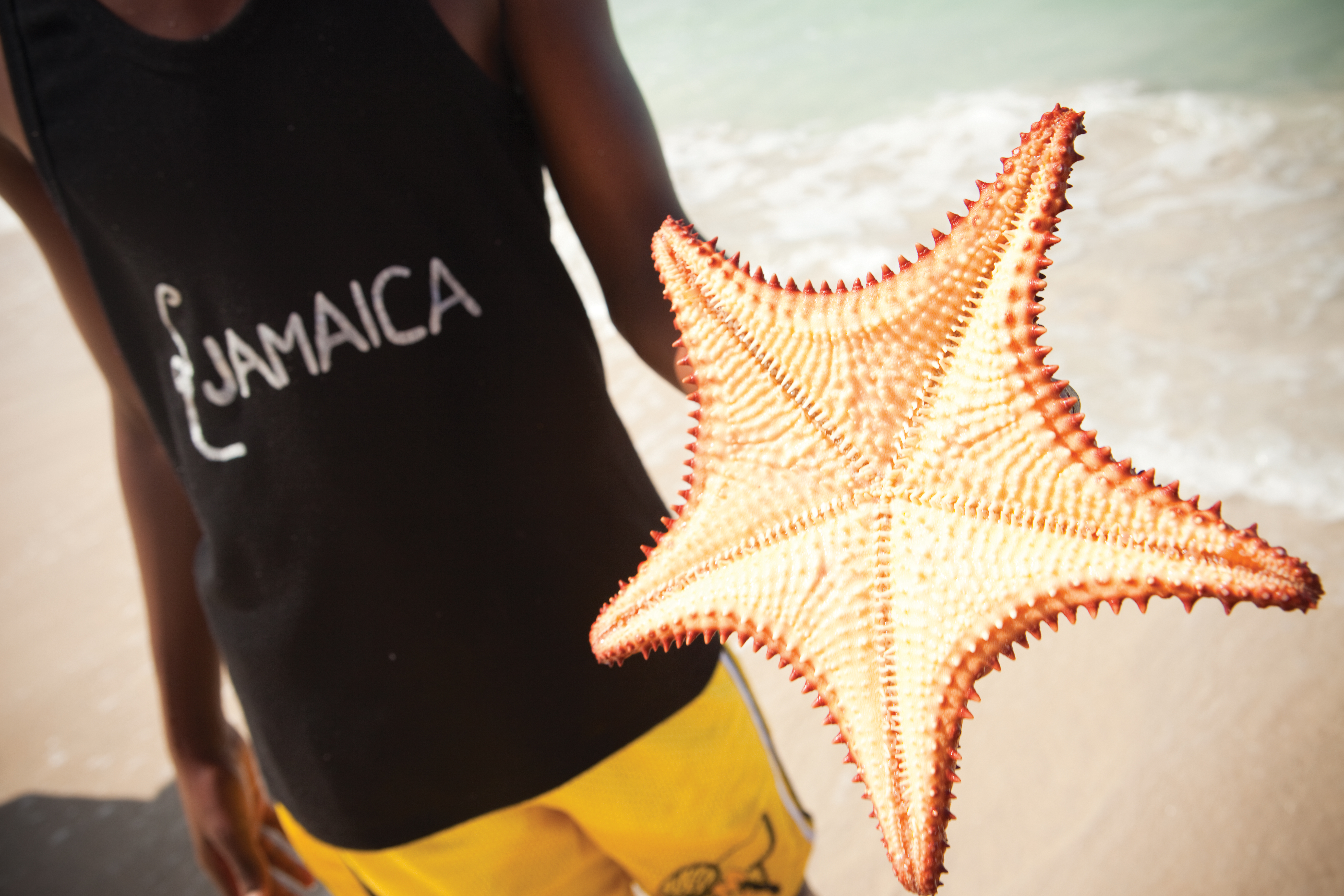 Travel Agency All-Inclusive Resort Couples Negril 26
