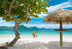 Travel Agency All-Inclusive Resort Sandals Grande St Lucian 67
