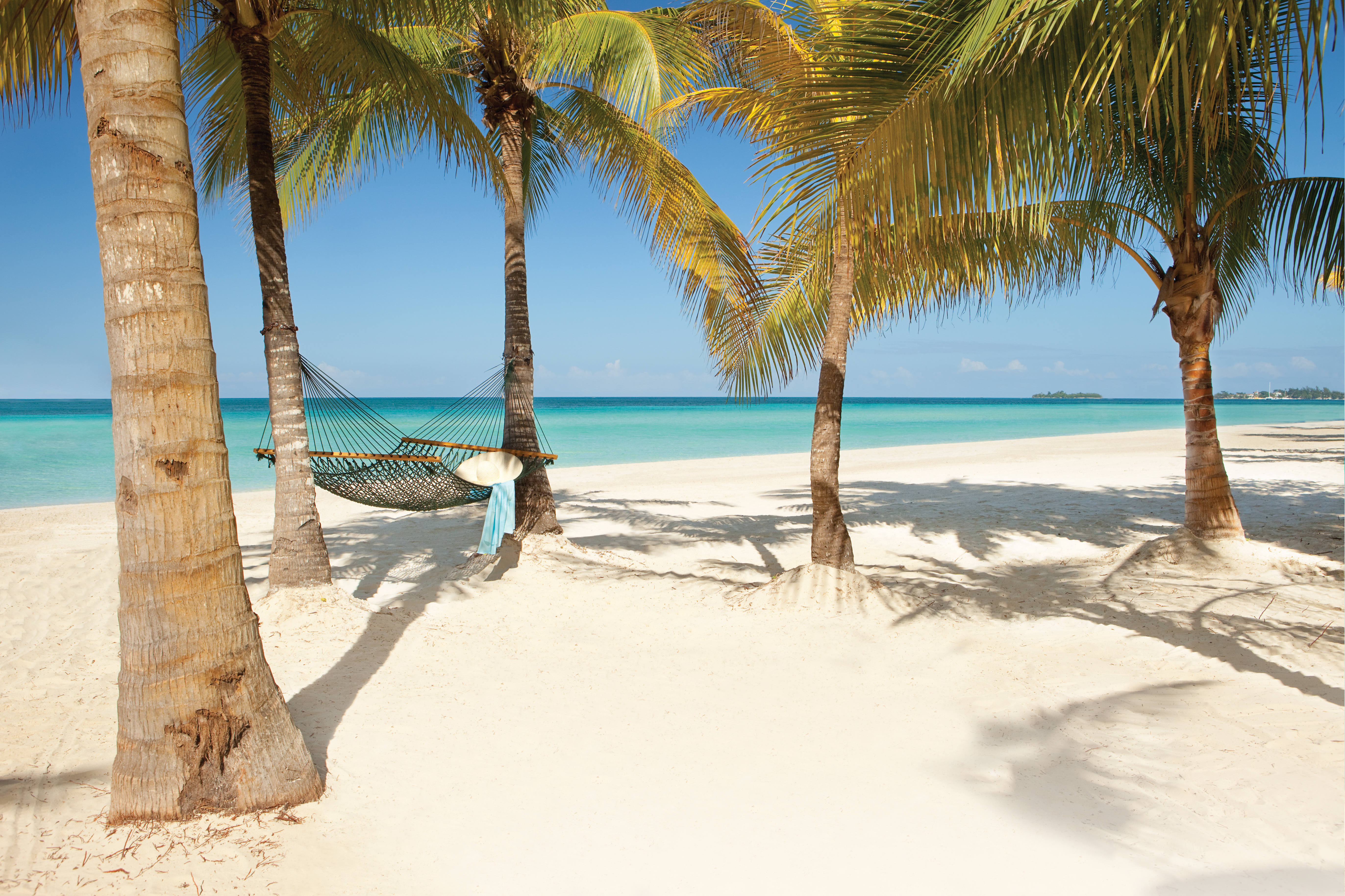 Travel Agency All-Inclusive Resort Couples Swept Away 56