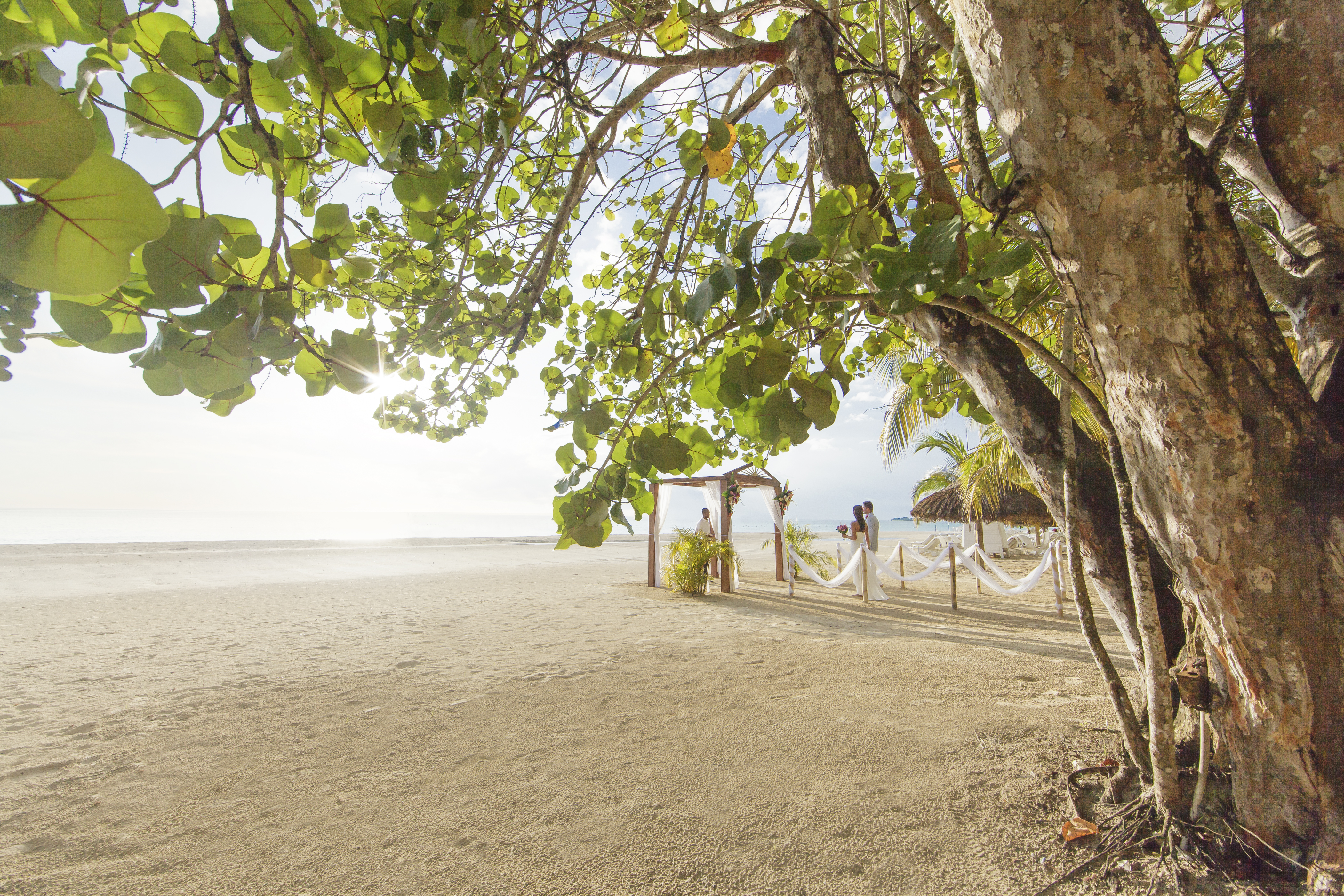 Travel Agency All-Inclusive Resort Couples Swept Away 10