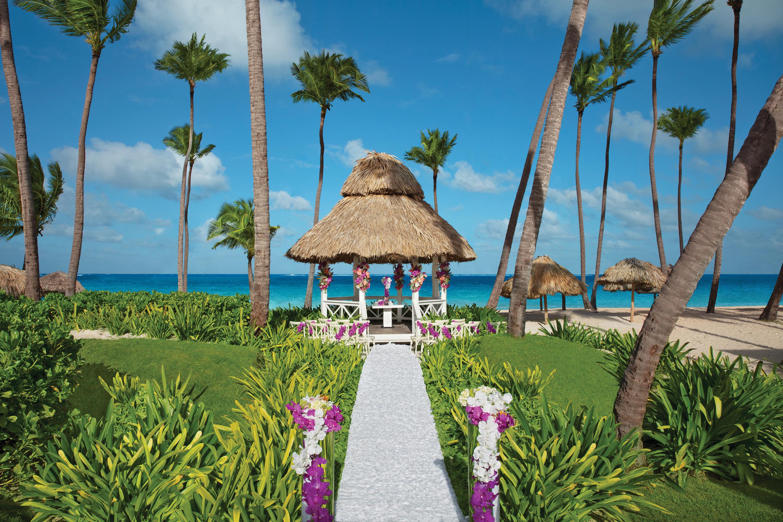Travel Agency All-Inclusive Resort Dreams Palm Beach 63