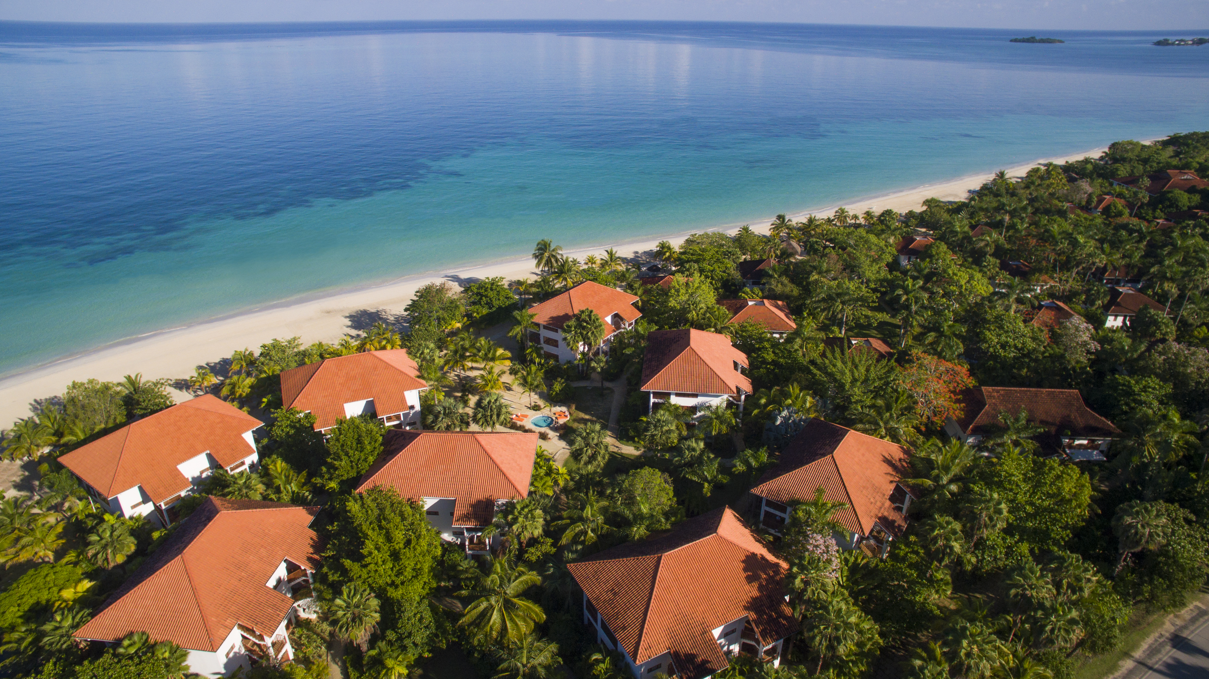 Travel Agency All-Inclusive Resort Couples Swept Away 33