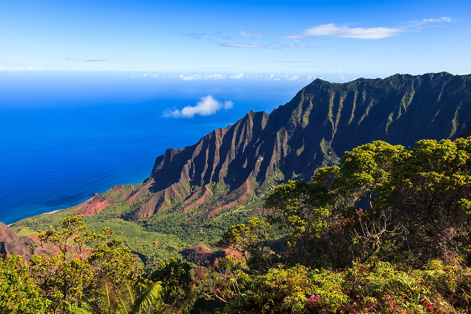 Vacations and honeymoons in Kauai
