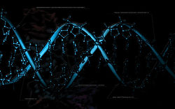 DNA_Wallpaper_1280x800_by_san_neechan.jp