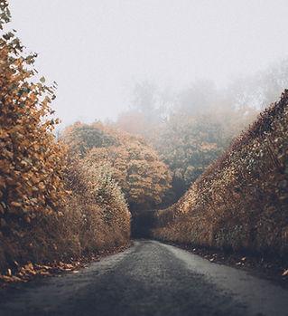 jesienią Road