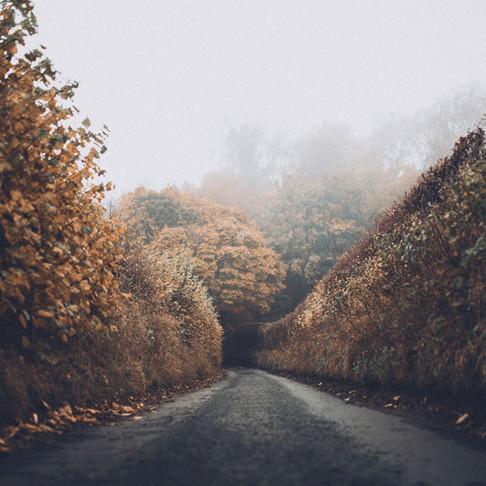 Running in the Rain: Straight Autumn Hair