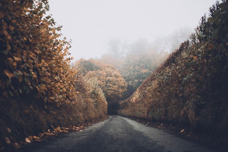 Weg van de herfst
