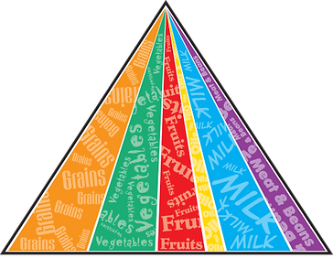 food pyramid.png