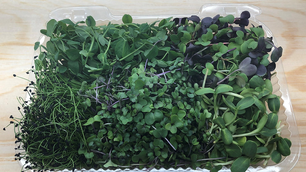 Microgreen Variety Pack (Cut)