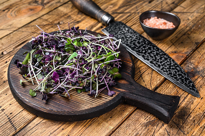 Radish microgreens, green leaves and purple stems. Wooden background. Top view.jpg