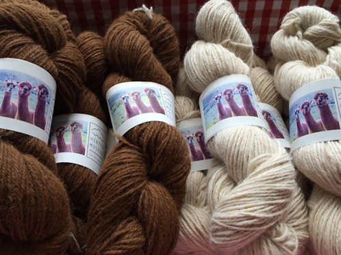 Bio Alpaka Wolle à 100g/Strang
