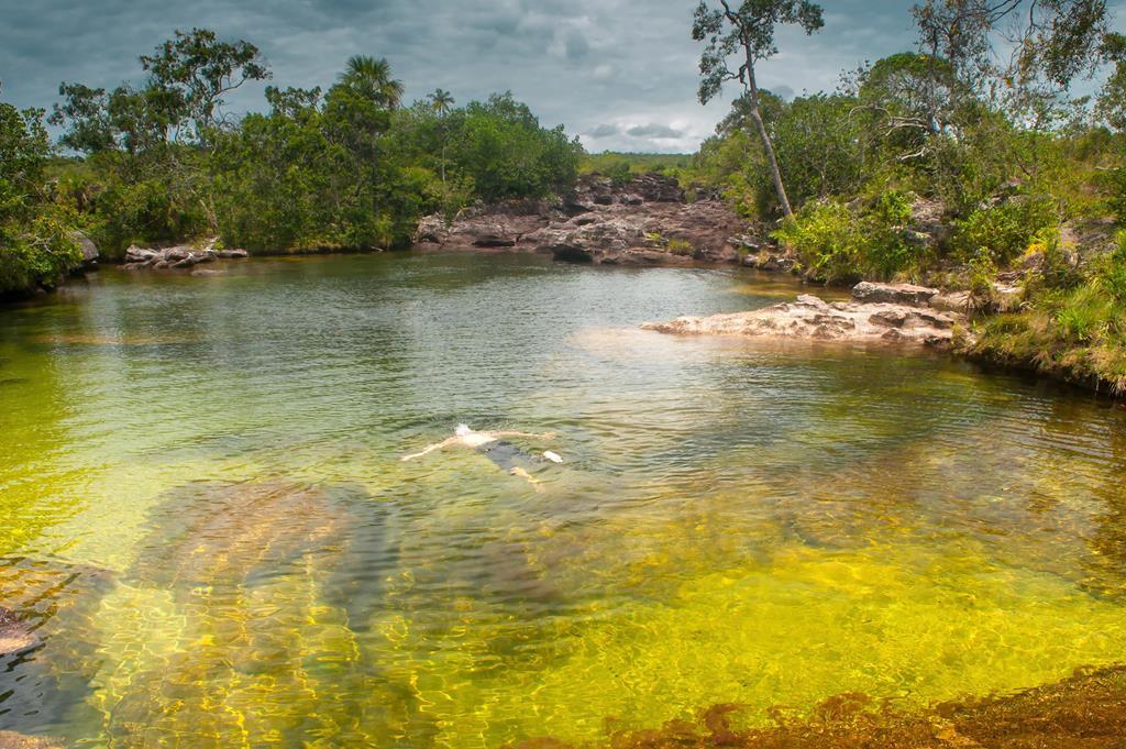 Cano-Cristales-nadar-es-posible (Copy).j