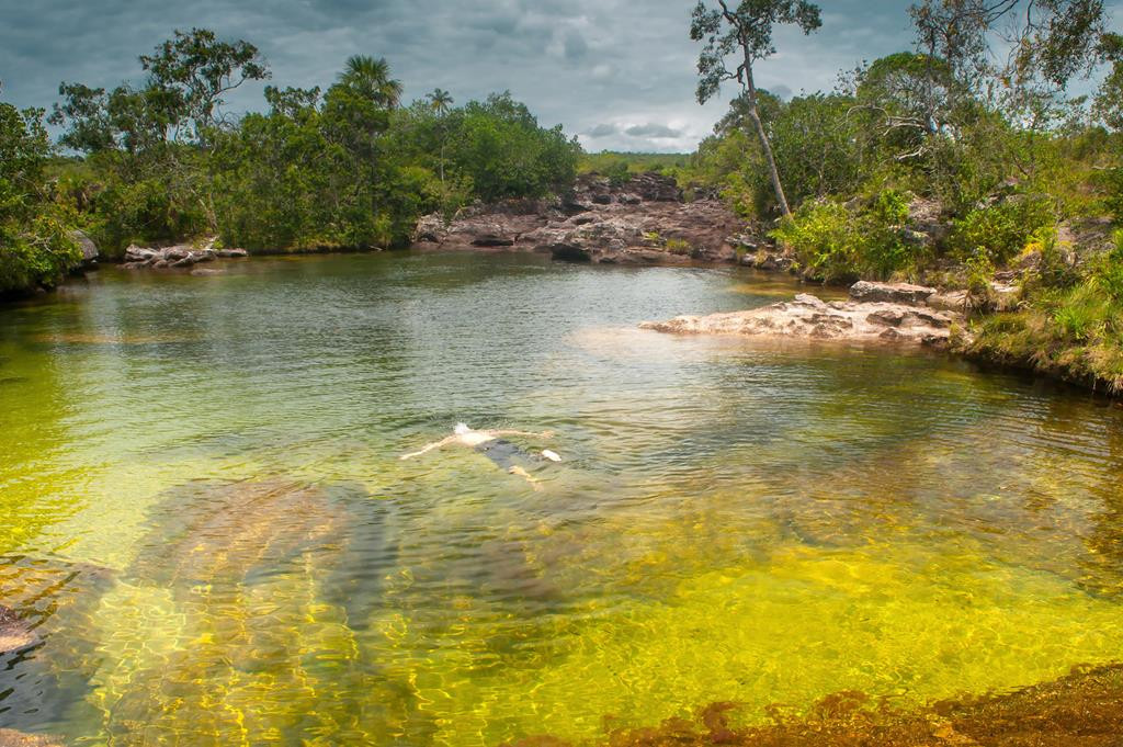 Caño Cristales | Destinos | Newtours Colombia