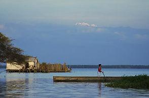 Nature Reserve Cienaga Grande | Barranquilla Daytours | Newtours Colombia