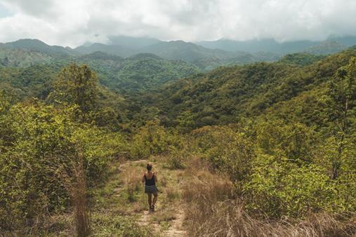 Minca Santa Marta Trail (Copy).jpg