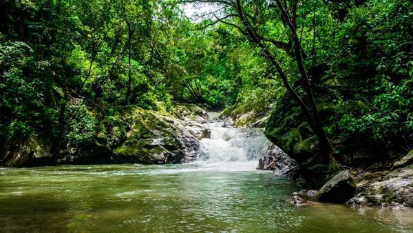 Wasserfall minca.jpg