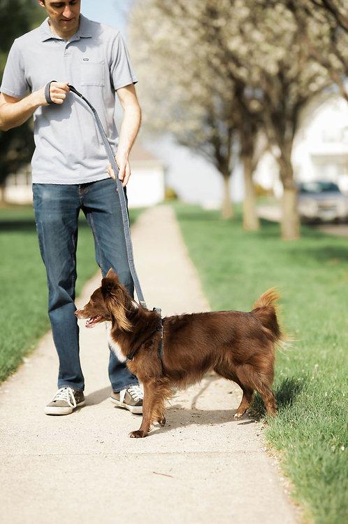Denim Dog Harness and Leash