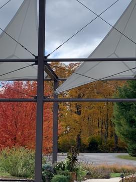 TPAC Autumn Sails.jpg