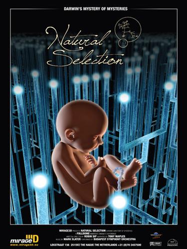 38poster-natural_selection-600.jpg