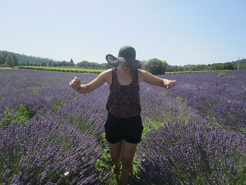 Corrine van Vliet lavender fields in France